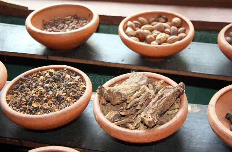 Ingredients of ayurvedic treatment, Sri Lanka. Close up of ingredients of ayurvedic treatment - spices, roots, nuts, aromatic herbs, Sri Lanka stock photos