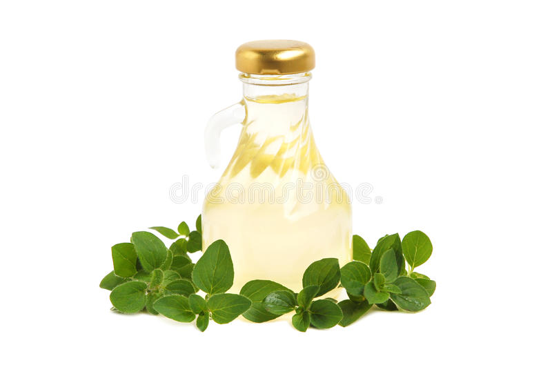 Download Ingredients for cooking stock image. Image of leaf, leaves - 23152213