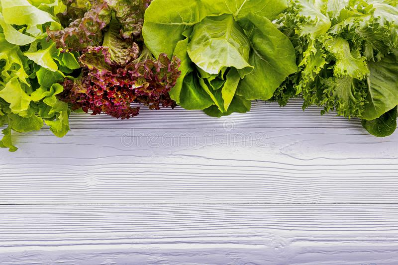 Ingredients for the healthy foods selection. Fresh Green lettuce set up on white wooden background stock images