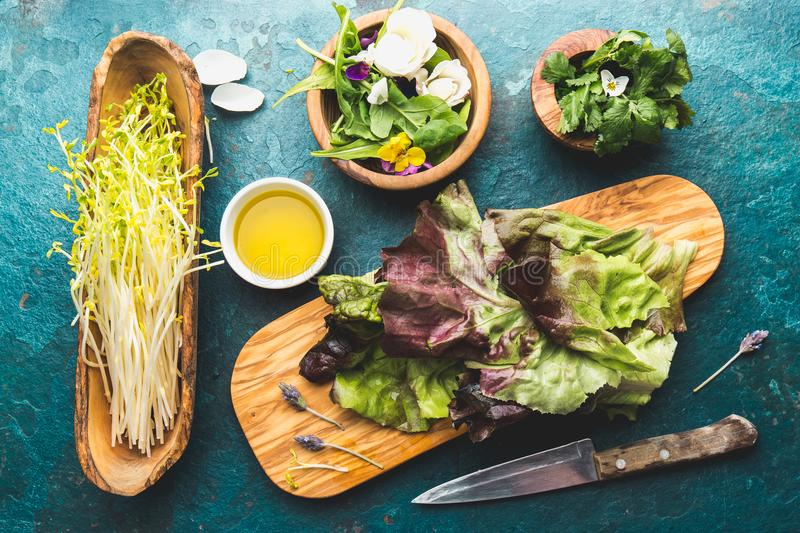 Ingredients for healthy salad - lettuce, sprouts, edibles flowers and arugula. Flat lay, copy space food. Detox. Organic. Nutrition. Salad leaves with herbs and royalty free stock images