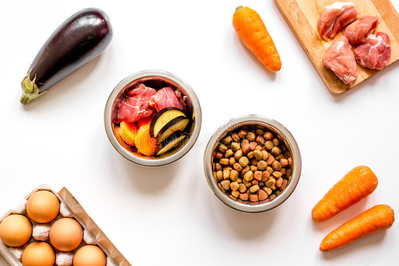 Ingredients for pet food holistic top view on white background.  stock photography