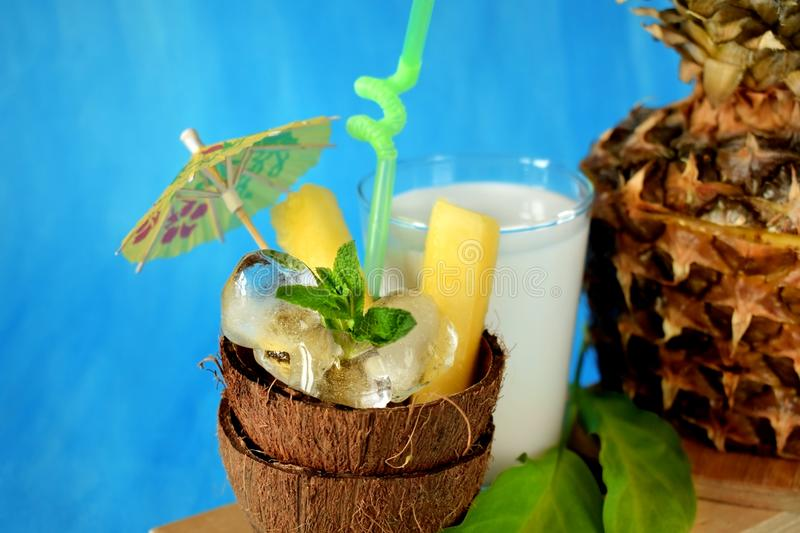 Ingredients for pina colada cocktail royalty free stock image