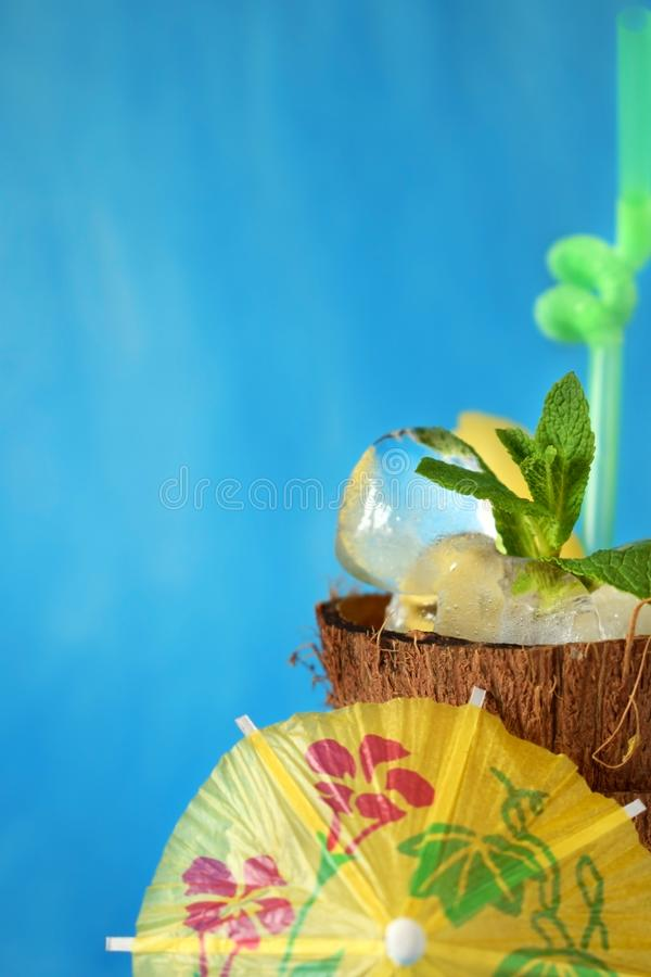 Ingredients for pina colada cocktail royalty free stock photos