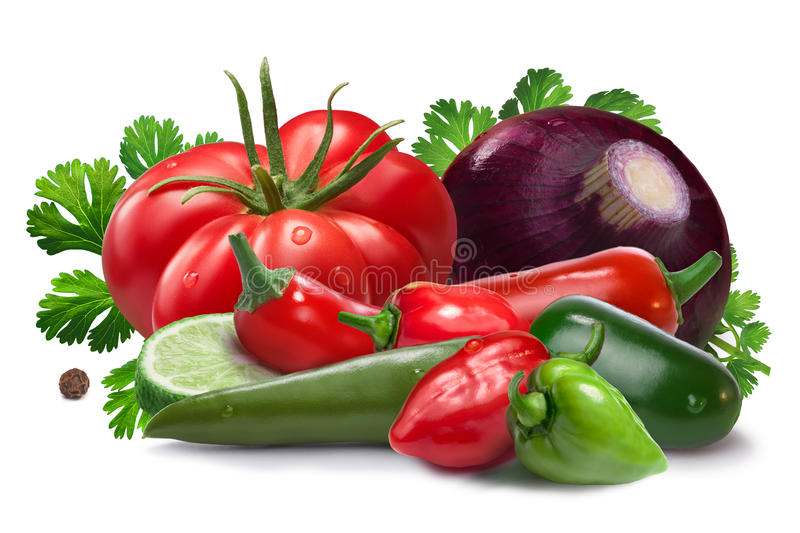 Ingredients for salsa cruda sauce, clipping paths. Onion, red and green habanero, halapeno, serrano peppers, heirloom tomato, cilantro. Ingredients for Salsa stock image