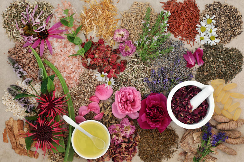 Ingredients for Skin Care Treatment. With flower and herb selection, almond oil and rose petals in a mortar with pestle on hemp background stock image