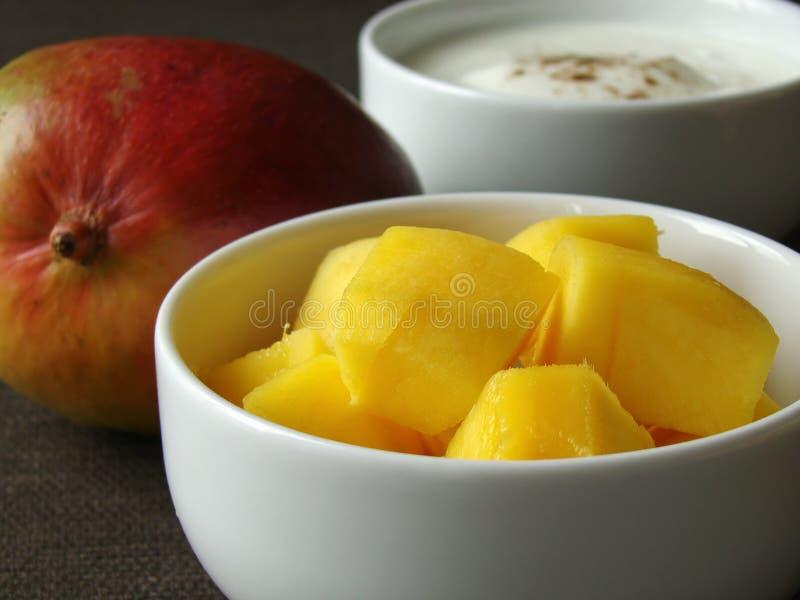 Download Ingredients To Mix Mango Lassi Stock Photo - Image of bowls, beverage: 11701830