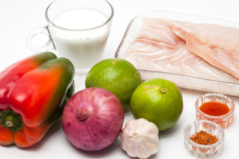 Ingredients to prepare white fish ceviche royalty free stock photos