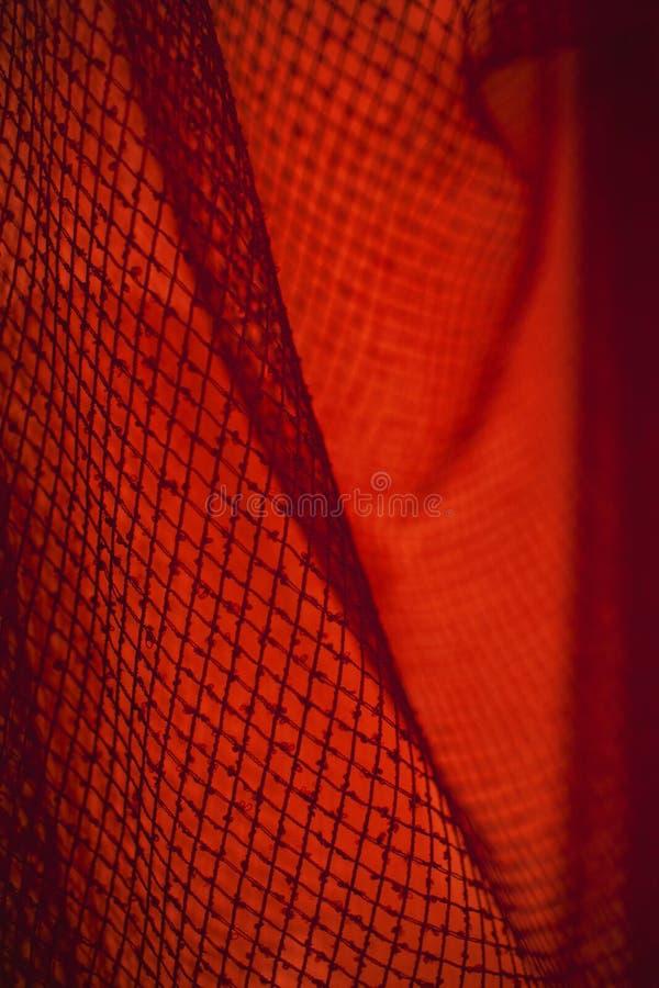 Ingrepp i rött ljus royaltyfri bild