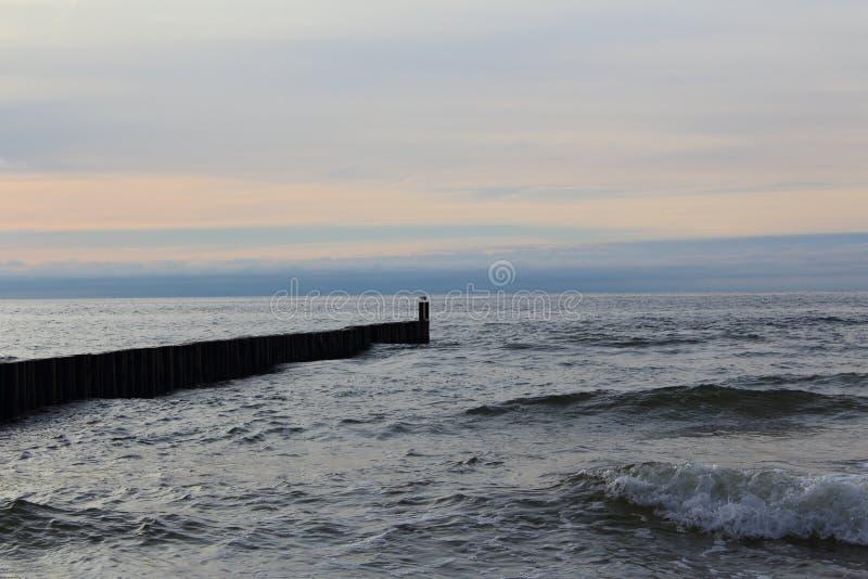 Inguine alla spiaggia del Mar Baltico del morskie del ustronie, Polonia nella penombra di sera immagini stock libere da diritti