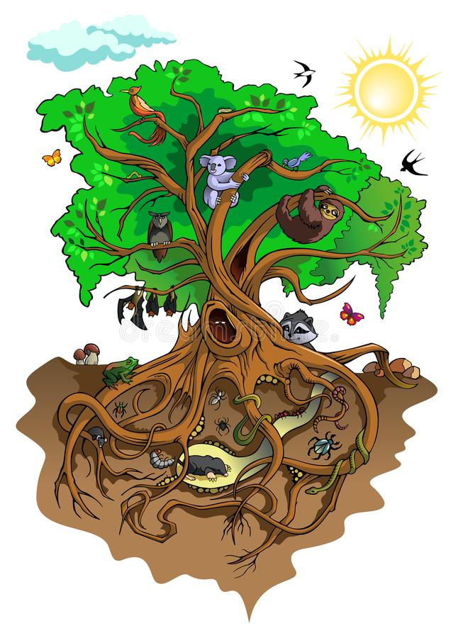 Inhabitants of the tree. Different creatures living with tree, vector illustrationn vector illustration