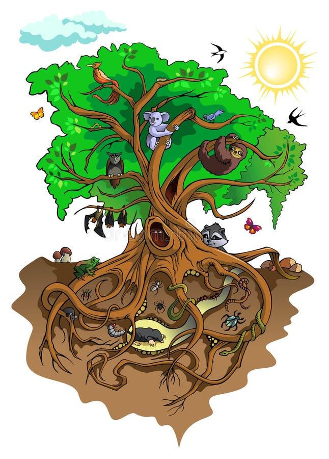 Inhabitants of the tree vector illustration