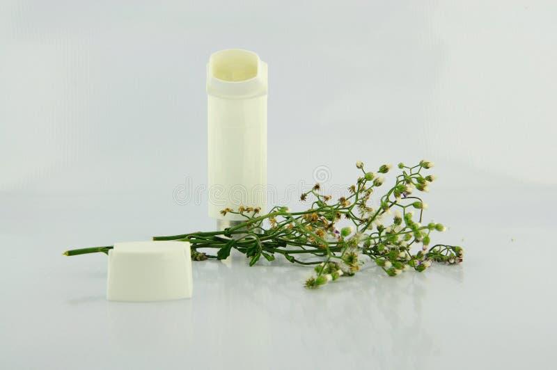Inhalateur d'asthme et fleur d'herbe photo libre de droits