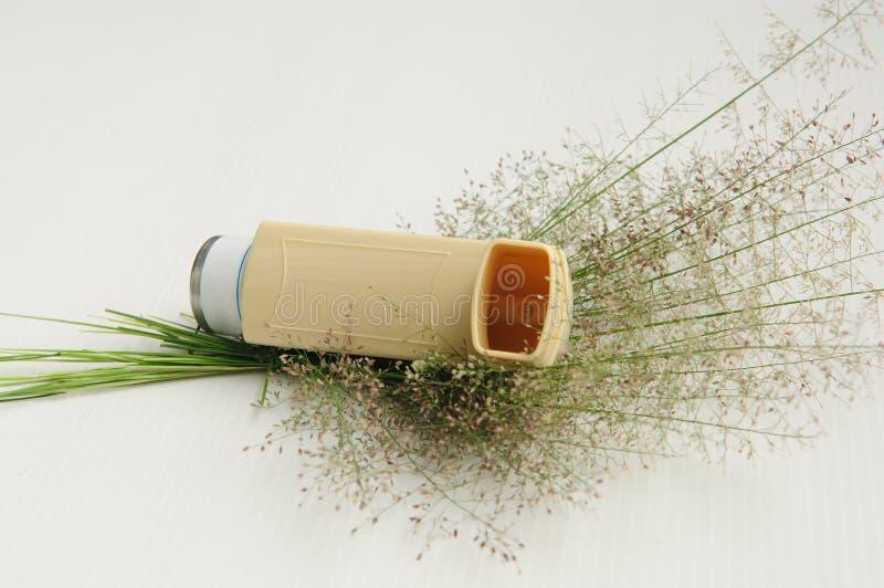 Inhalateur d'asthme et fleur d'herbe photographie stock