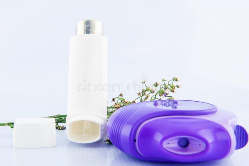 Inhalateur d'asthme et fleur d'herbe photos libres de droits