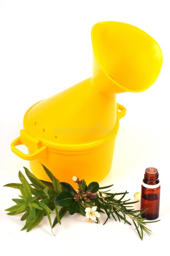 Inhaler και μπουκάλι του ουσιαστικού πετρελαίου σε ένα άσπρο υπόβαθρο στοκ φωτογραφίες