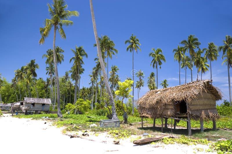 Inheemse Hut op Tropisch Eiland royalty-vrije stock foto's