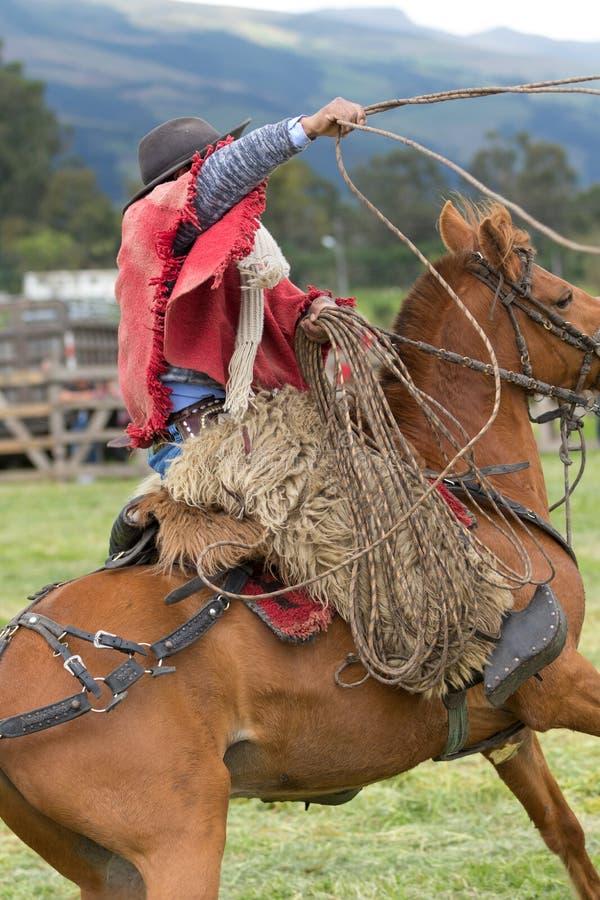 Inheemse quechua cowboy die op gebied lasso werpen stock afbeelding