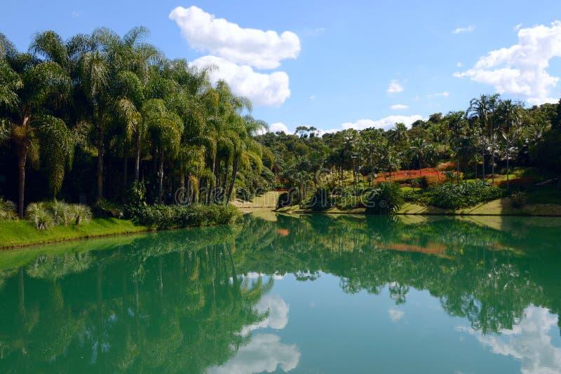 Inhotim公开美术馆在巴西 免版税库存图片