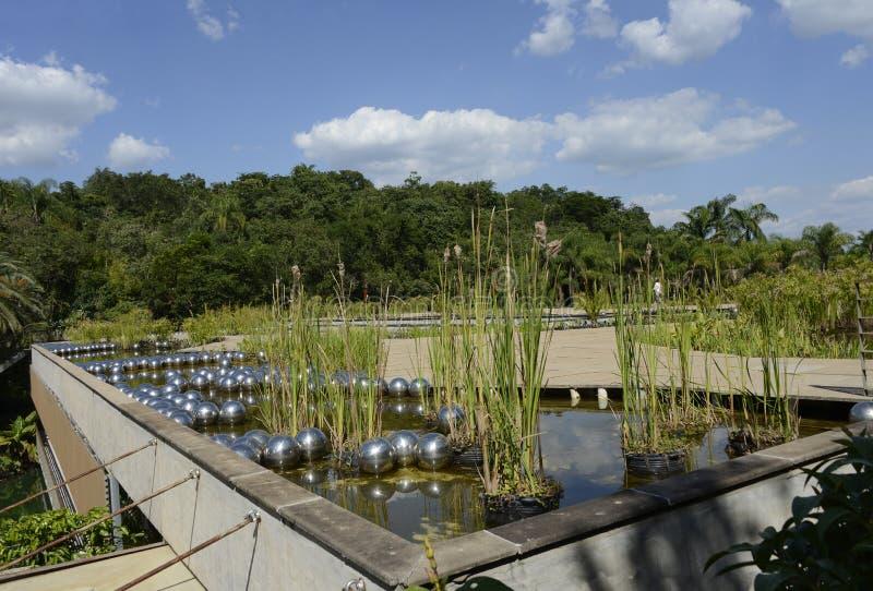 Inhotim public Art museum in the Brazil. Brunadinho, Inhotim, Minas Gerais, Brazil - FEBRUARY 2013: Yayoi Kusama Narcissus garden, stainless steel balls on water stock images