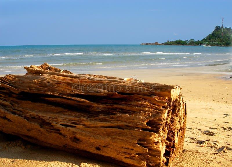 Inizio attività di Woden la spiaggia fotografia stock libera da diritti