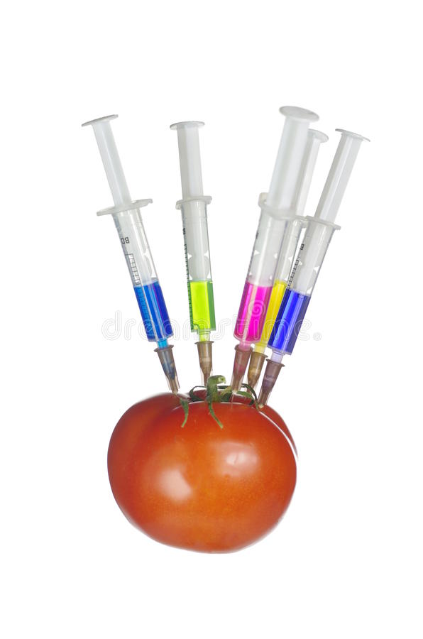 Injection Into Fresh Red Tomato Royalty Free Stock Image