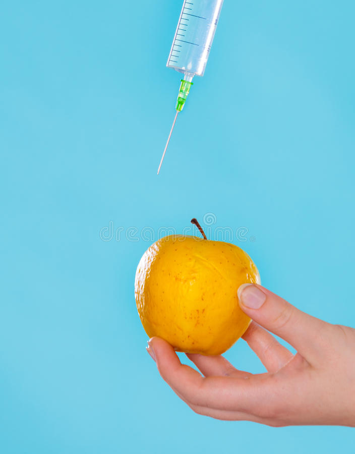 Injektion in i det röda äpplet, genetiskt ändringsbegrepp arkivfoto