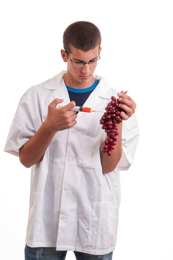 Injektion in i frukter. Genetiskt ändrad frukt arkivbilder
