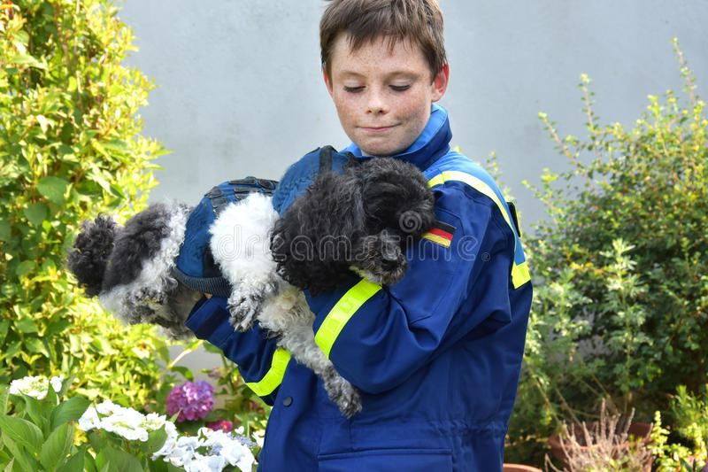 Injured dog. Young boy rescues injured dog stock photography