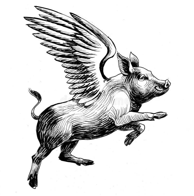 Flying pig. Ink black and white illustration of a flying pig royalty free illustration