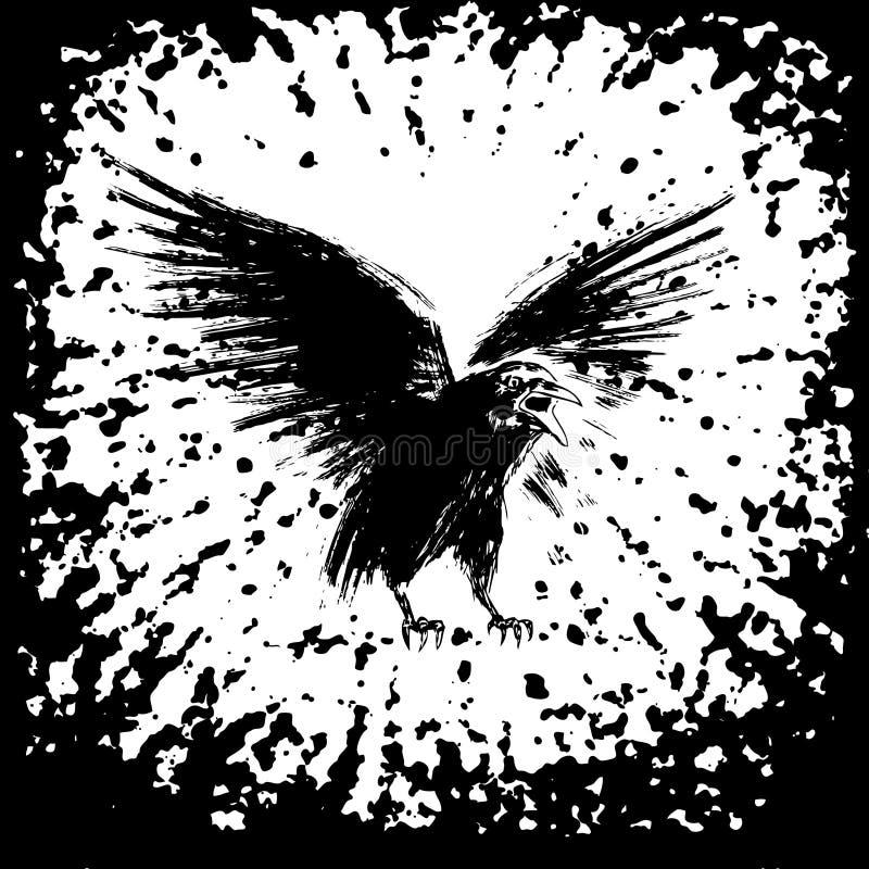 Black crow vector illustration