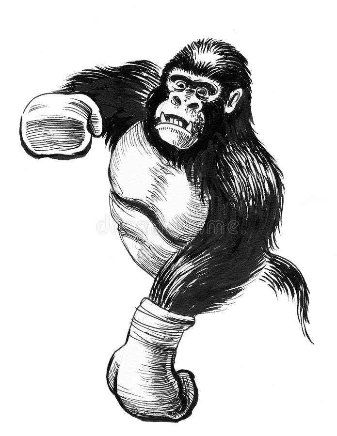 Gorilla boxer royalty free illustration