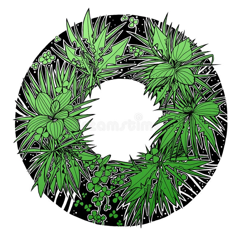 Ink drawing summer floral round frame, green and black, white background royalty free illustration