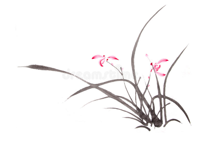 Ink orchid drawing vector illustration