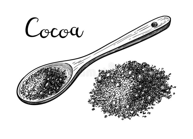 Ink sketch of cocoa powder. Cocoa powder. Ink sketch isolated on white background. Hand drawn vector illustration. Retro style royalty free illustration