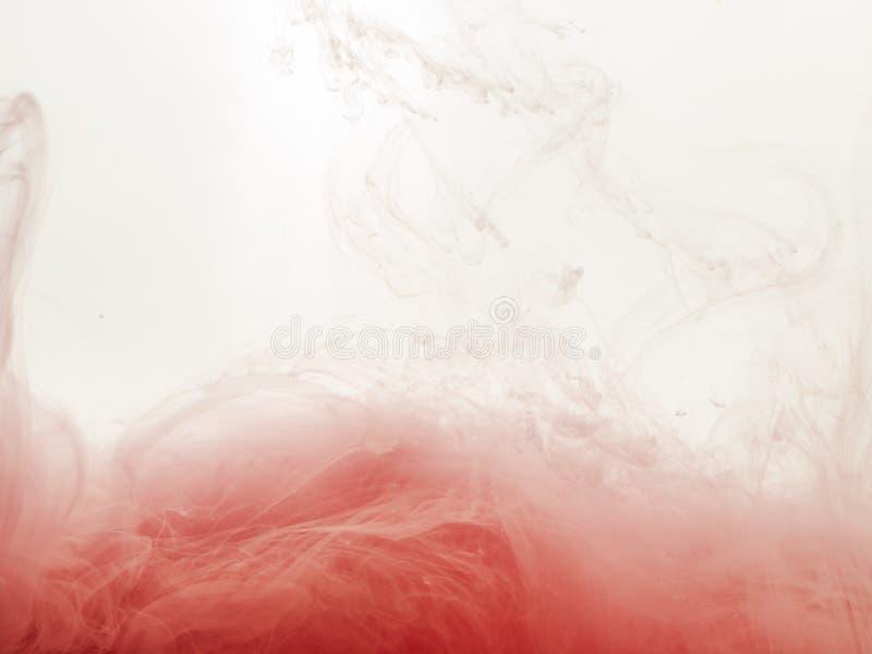 Ink virveln i vatten som isoleras på vit bakgrund Målarfärgen i vattnet Mjuk spridning små droppar av rosa färgpulver in arkivfoto