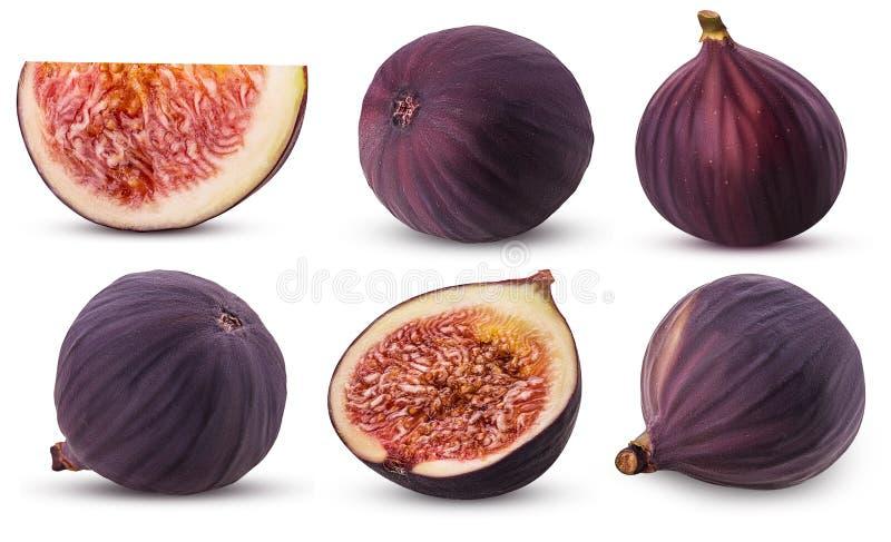 Inkasowa świeża figi owoc, cała, plasterek, cięcie w połówce zdjęcia royalty free