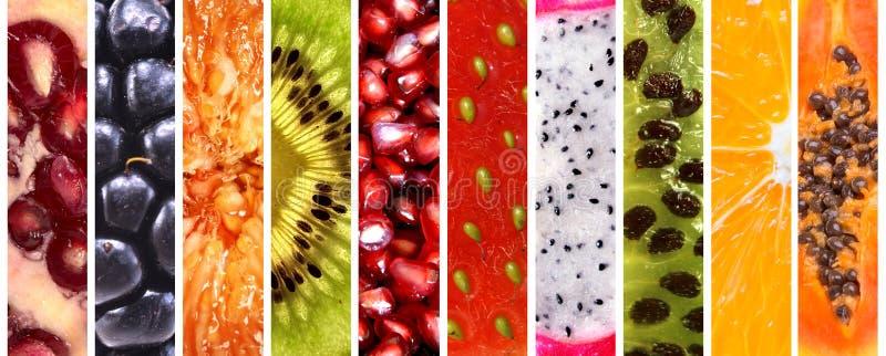 inkasowe świeże owoc obraz stock
