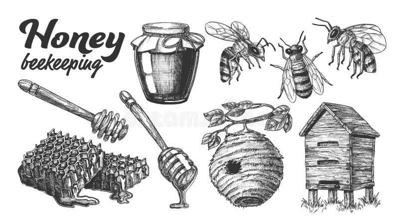 Inkasowej Miodowej Beekeeping pasieki Ustalony wektor ilustracji