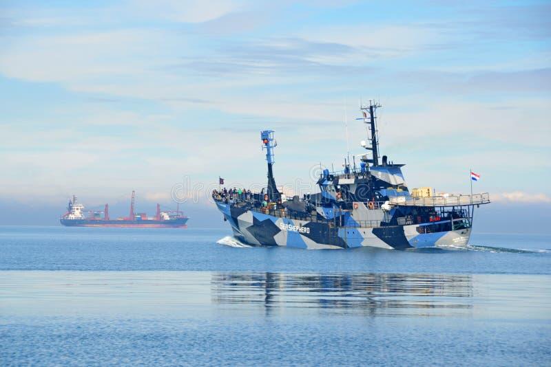 INKASTARE för EGENNAMN för havsherdeanti--valfångst skyttel royaltyfria bilder