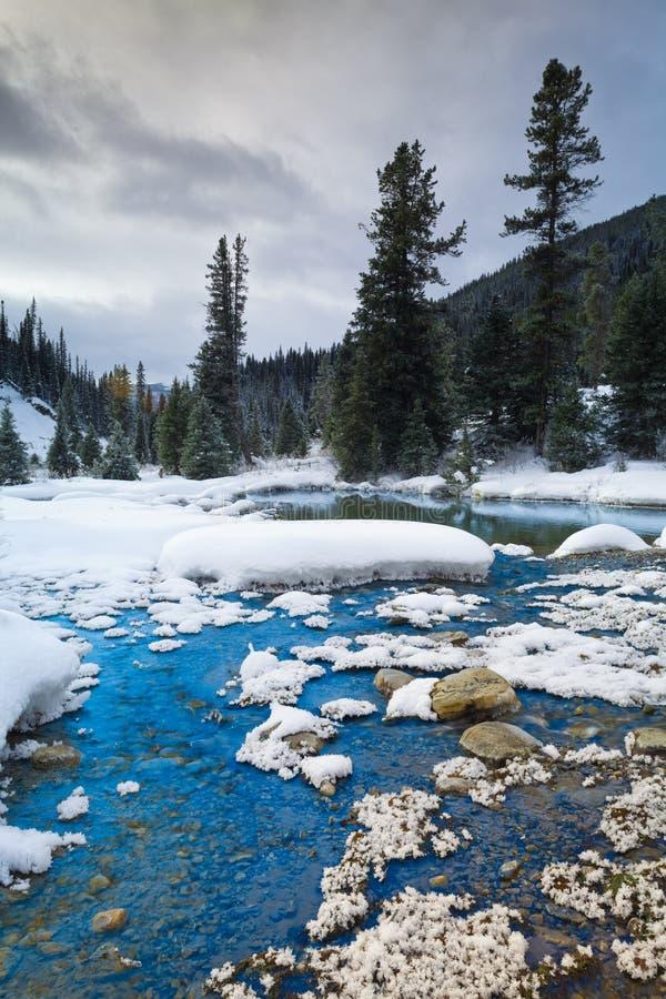 Inkpotsna i den Banff nationalparken, Alberta royaltyfria bilder