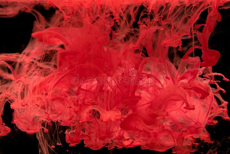Inkt die die in water, Kleurendaling in water wervelen in motio wordt gefotografeerd stock afbeeldingen