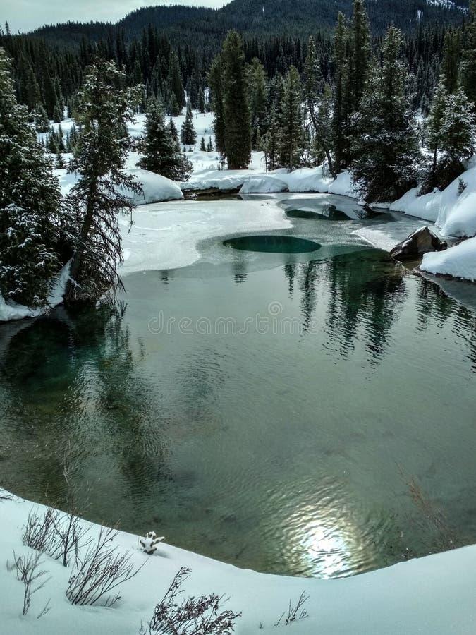 Inktpotten in Johnston Canyon in de winter royalty-vrije stock foto