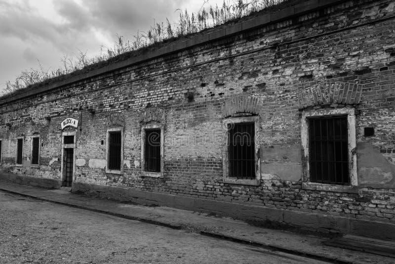 Inkvartera i en barack kvarter A i den svartvita Terezin koncentrationsläger - arkivbild