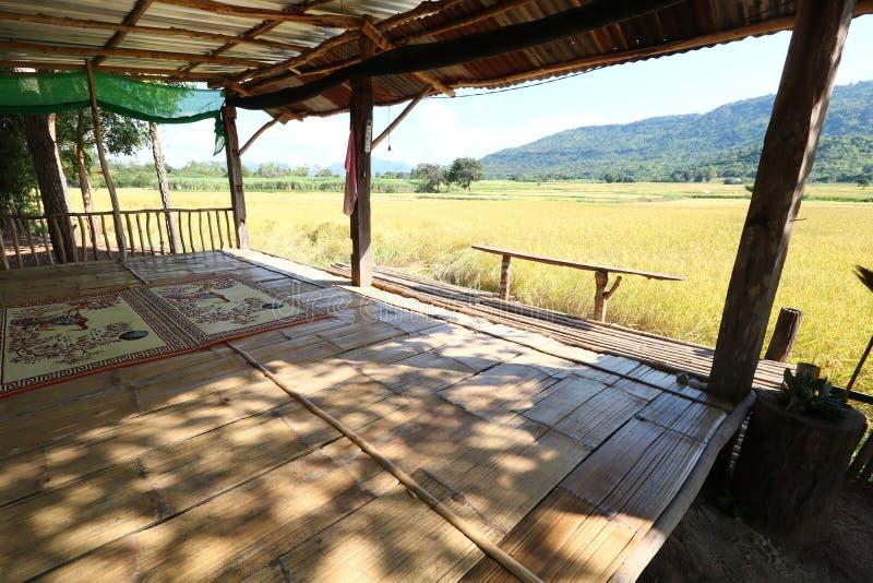 Inkvartering för övervakning av risfält royaltyfria foton