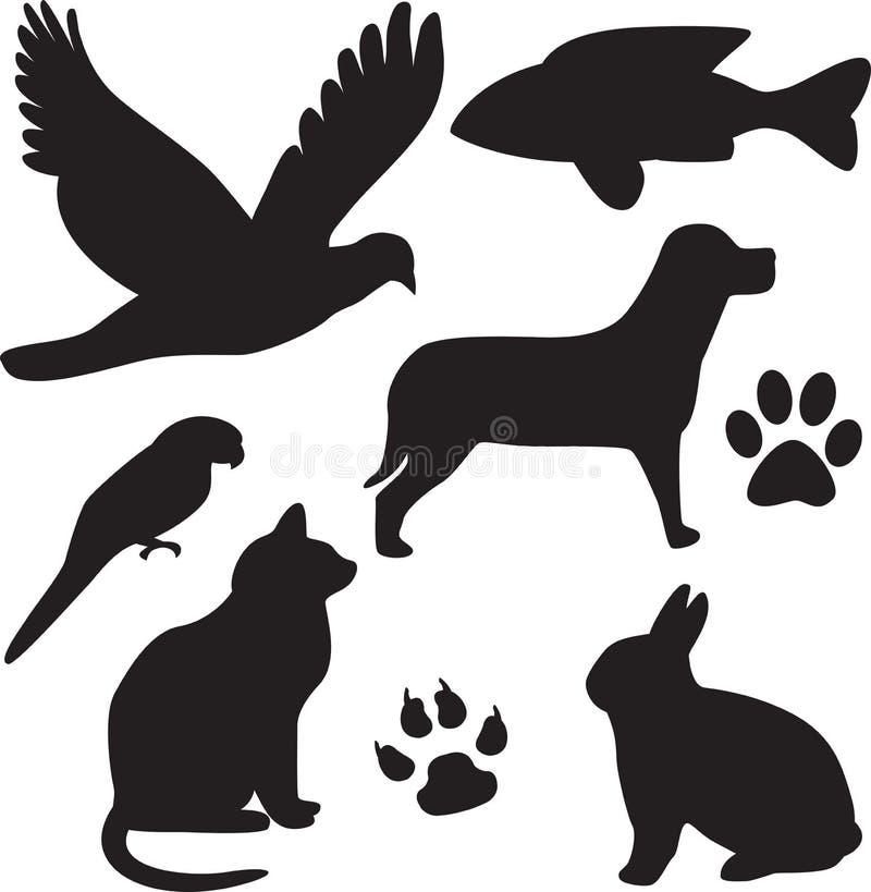 Inländische Haustiere lizenzfreie abbildung
