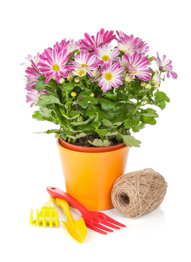 Inlagd blomma och trädgårds- hjälpmedel arkivfoto