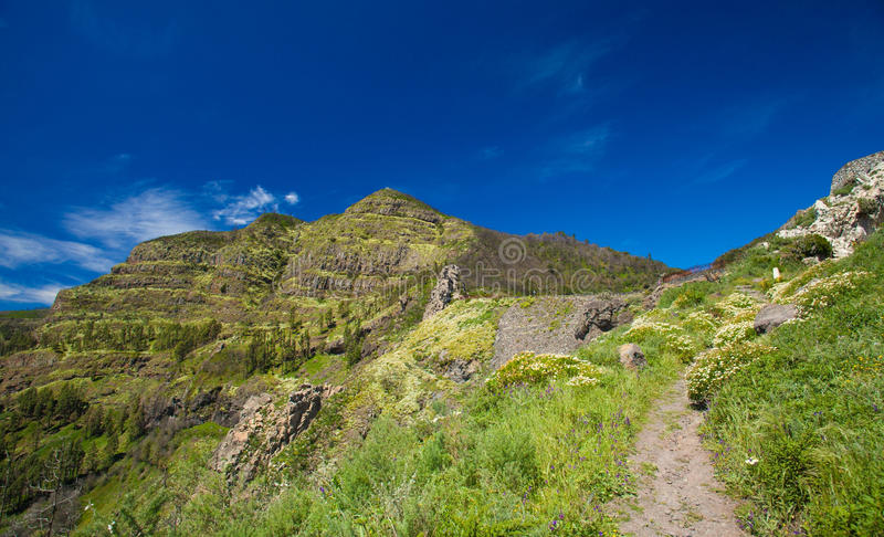 Inland La Gomera. Foothpath in Los Roques - Group of volcanic plugs in the middle of the island stock photography