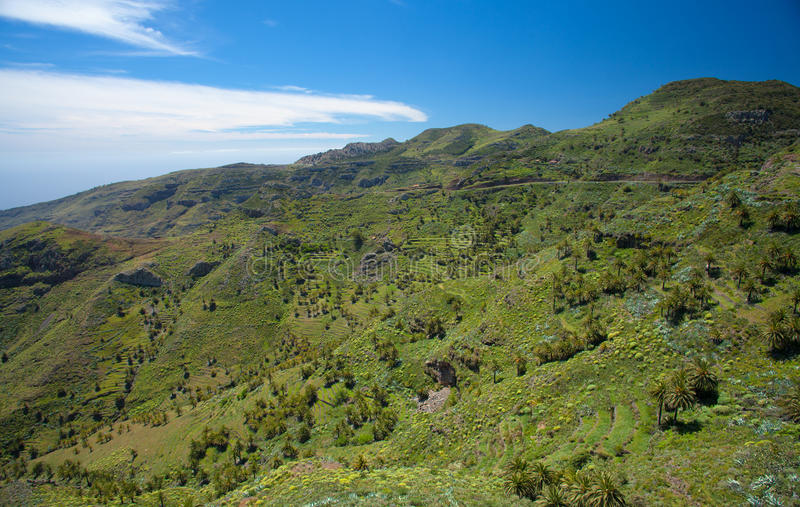 Inland La Gomera. Green terraced valley sloping down to the ocaen stock photography