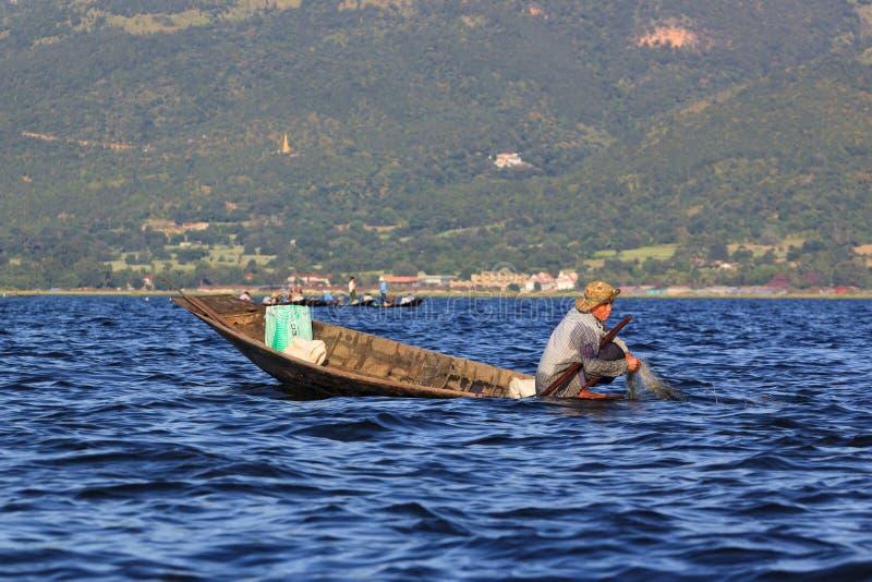 Inle湖,缅甸,2018年11月20日-工作地道的渔夫检查他们的在Inle湖水的网  免版税图库摄影