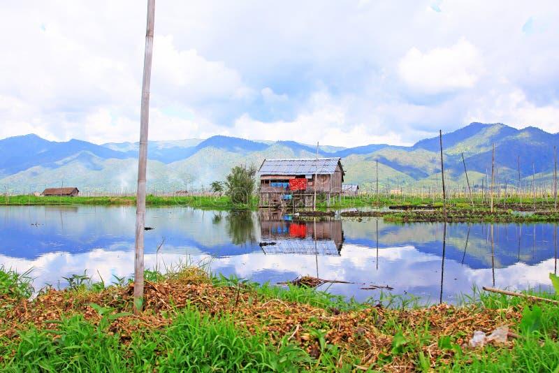 Inle Lake Floating Farm, Myanmar. Inle Lake Floating Farm In Myanmar stock images